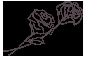 Rose - Love